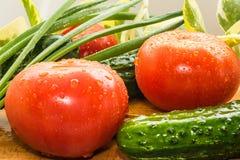 Reife rote Tomaten, grüne Gurken, Frühlingszwiebelfedern werden mit großen Wassertropfen bedeckt Stockfoto