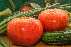 Reife rote Tomaten, grüne Gurken, Frühlingszwiebelfedern werden mit großen Wassertropfen, Zusammensetzung auf einem hölzernen bed Lizenzfreie Stockfotos