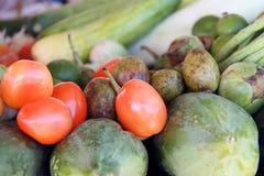 Reife rote Tomaten und Gemüse Lizenzfreie Stockbilder