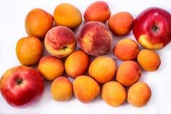 Reife rote und orange Aprikosen, Nektarinen, Äpfel auf weißem Hintergrund Stockfoto