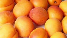Reife saftige Aprikosen in der Bewegung Rotieren Sie auf einer Platte stock footage