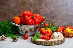 Reife saftige Tomaten der unterschiedlichen Vielzahl, grüner wohlriechender Basilikum, Knoblauch stockfotografie
