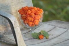 Reife Salmonberries auf rustikalem Stuhl Stockfotografie