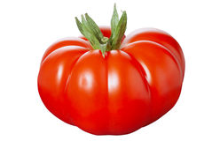 Reife Tomate Lizenzfreies Stockbild