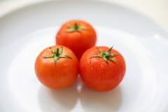 Reife Tomaten auf einer weißen Platte Stockfotografie