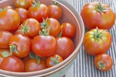 Reife Tomaten in einer Schüssel Lizenzfreies Stockbild