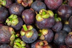 Reife und frische Mangostanfrüchte vom Markt, saftiger tropischer Geschmack Lizenzfreie Stockfotos