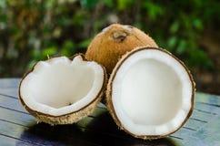 Reife und offene Kokosnüsse stockfotos