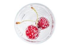 Reife und süße Kirsche in einem Glas funkelndem Sodawasser gesetzt Stockfotografie