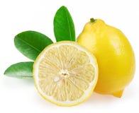 Reife Zitrone mit Scheiben und Blättern Stockfotografie