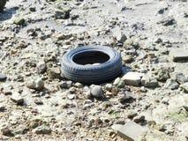 Reifen auf dem trockenen Strand lizenzfreie stockfotografie