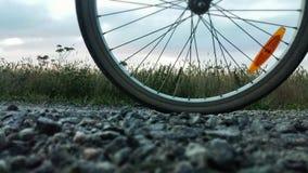 Reifen auf Straße Lizenzfreie Stockbilder