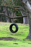 Reifen-Schwingen stockfoto