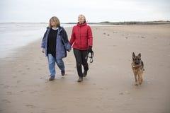 Reifen Sie das weibliches Paarlachen und -Händchenhalten gehend entlang den Strand stockfoto