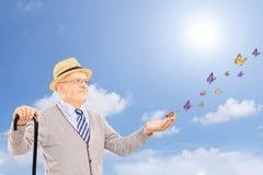 Reifen Sie den lächelnden Mann, der einen Stock hält und Schmetterlinge betrachtet Stockbild