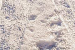 Reifenbahnen auf einem Schnee Stockbild
