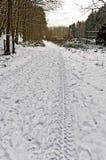 Reifenbahnen auf schneebedecktem Waldweg Stockbild