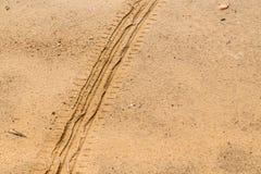 Reifenbahnen auf trockenem braunem gelbem Schotterweg Lizenzfreie Stockfotos