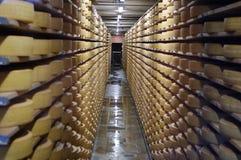 Reifender Käse des Schweizers Lizenzfreie Stockfotografie