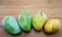 Reifendes Stadium der Mango Lizenzfreie Stockfotos