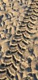 Reifenspur im nassen Sand lizenzfreies stockfoto