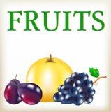 Reifer Apfel, blaue Trauben, blaue Pflaumen Lizenzfreie Stockbilder