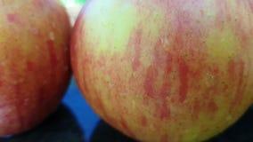 Reifer Apfel naß auf dem Graszeitlupesonnenlicht gesund stock footage