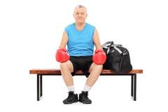 Reifer Boxer, der auf einer Bank sitzt Stockfotografie