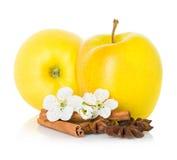 Reifer gelber Apfel mit Zimtstangen, Anisstern und Apfel blüht Lizenzfreie Stockfotos