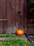 Reifer Kürbis vor einer Holztür Lizenzfreies Stockfoto
