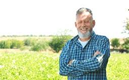Reifer Landwirt, der auf dem Gebiet steht stockfotos