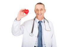 Reifer männlicher Doktor, der Herzmodell hält Stockfotografie