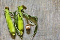 Reifer Mais, Maiskolben, amerikanisches Lebensmittel stockfotos