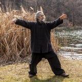 Reifer Mann, der draußen Tai Chi-Disziplin übt lizenzfreies stockfoto