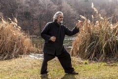 Reifer Mann, der draußen Tai Chi-Disziplin übt lizenzfreie stockbilder