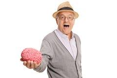 Reifer Mann, der ein Gehirnmodell zeigt Stockbild