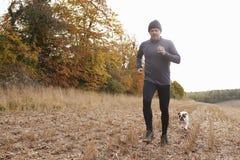 Reifer Mann, der um Autumn Field With Pet Bulldog läuft Stockfoto