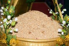 Reifer Reis des gelben Jasmins des Reiskornes Lizenzfreies Stockfoto