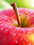 Reifer roter Apfel lizenzfreies stockbild