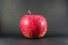Reifer roter Apfel auf einem schwarzen Hintergrund des hölzernen Brettes mit copyspace, zurück zu Schulherbstthema Lizenzfreies Stockfoto
