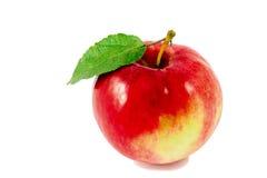 Reifer roter Apfel mit dem Blatt getrennt auf Weiß Stockfotografie