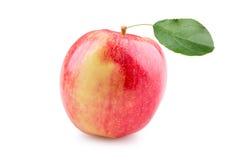 Reifer roter Apple mit Blatt Stockbilder