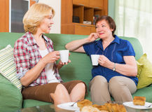 Reifer weiblicher trinkender Tee zwei Stockfoto