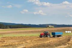 Reifer Weizen der Mähdrescher-Ernte auf einem Bauernhof in der Tschechischen Republik Fälliger Apfel aus den Grund in einem Apfel Stockbild