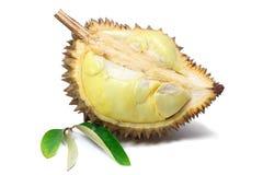 Reifes gelbes Fleisch von Durian und Durian treiben auf weißem Hintergrund, Frucht Blätter stockbild