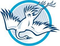 Reiger Crane Diving Down Cartoon Stock Foto
