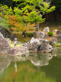 Reiger in Japanse tuin Stock Afbeeldingen