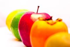Reihe Apfelkiwi-Kakipflaumenbaumpampelmuse der Früchte der orange stockfoto