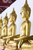 Reihe der Buddha-Statue Stockfotos