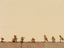 Reihe der getrockneten Totblätter auf einer Wand Stockfotografie